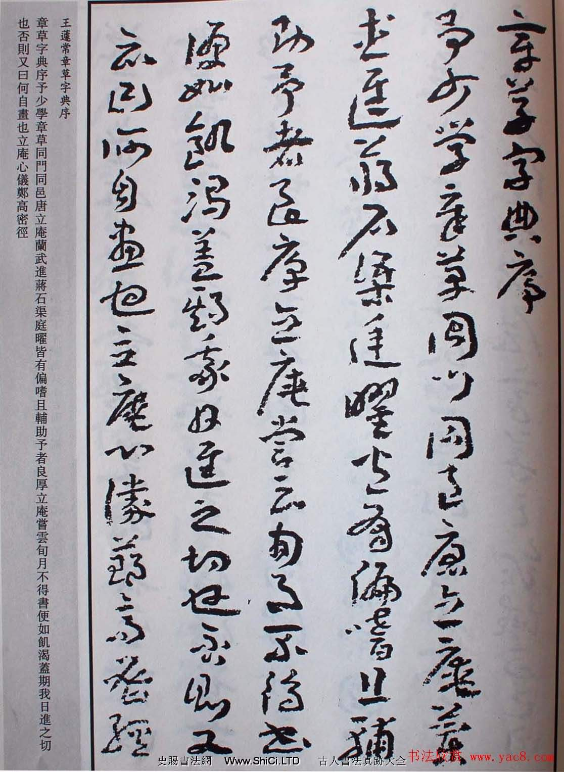 王遽常草書真跡欣賞《章草字典序》(共10張圖片)
