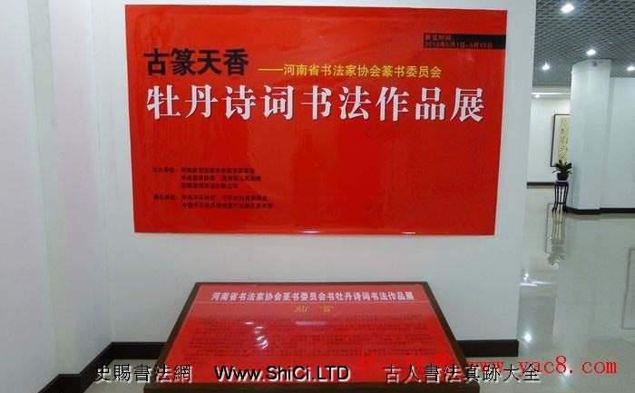 河南省書法家協會篆書牡丹詩詞書法展(共42張圖片)