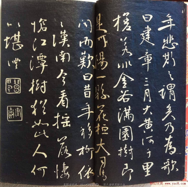 蘭新家傳書法碑帖分享《錢南園枯樹賦》