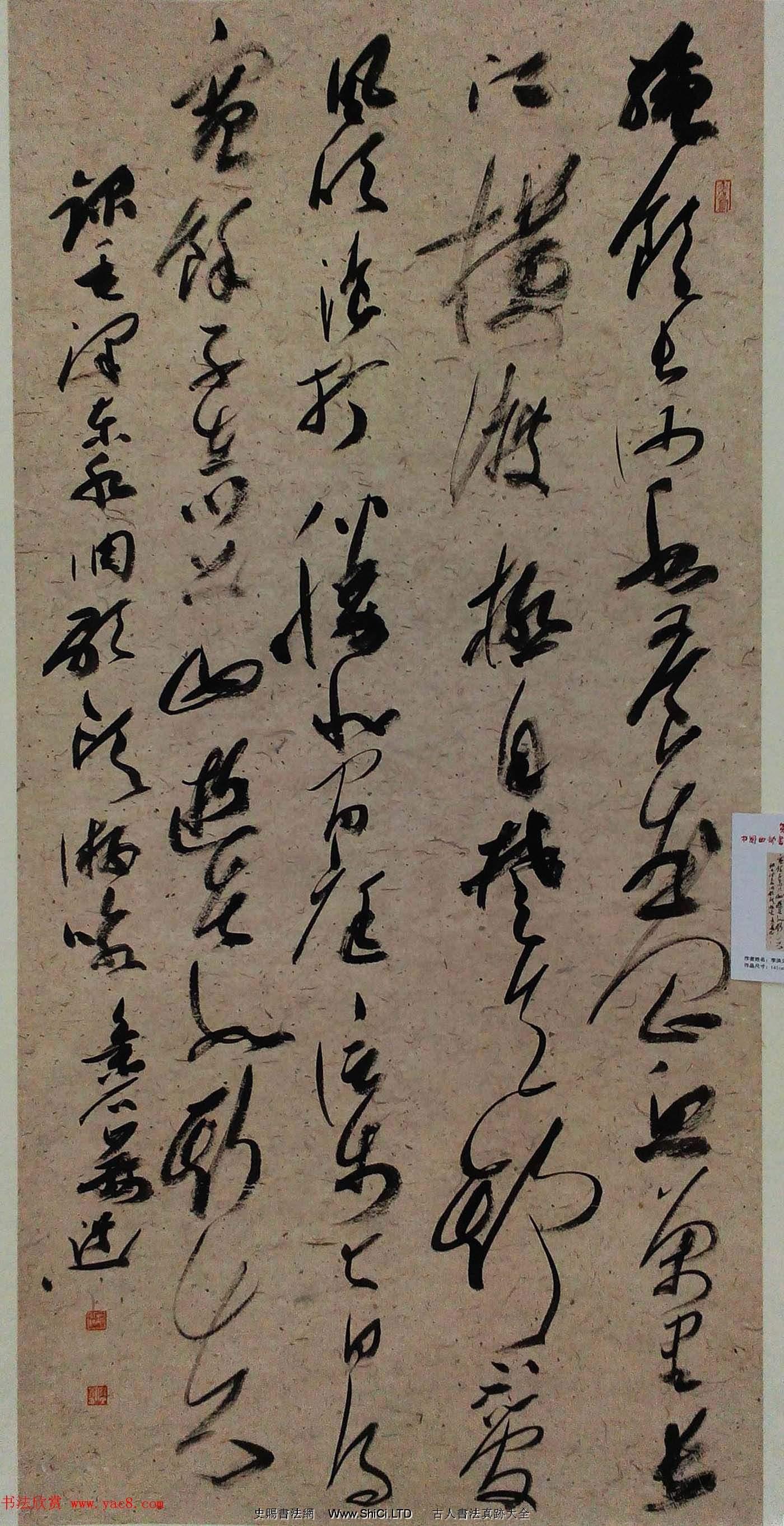 第四屆中國西部書法篆刻作品展評委、優秀獎作品