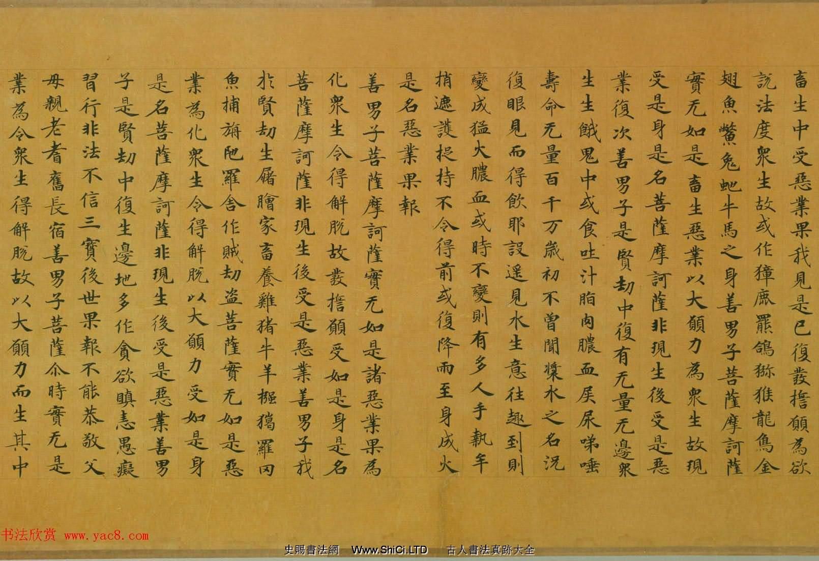 佛教經典手卷欣賞《唐人寫本大般涅盤經卷第三十一》