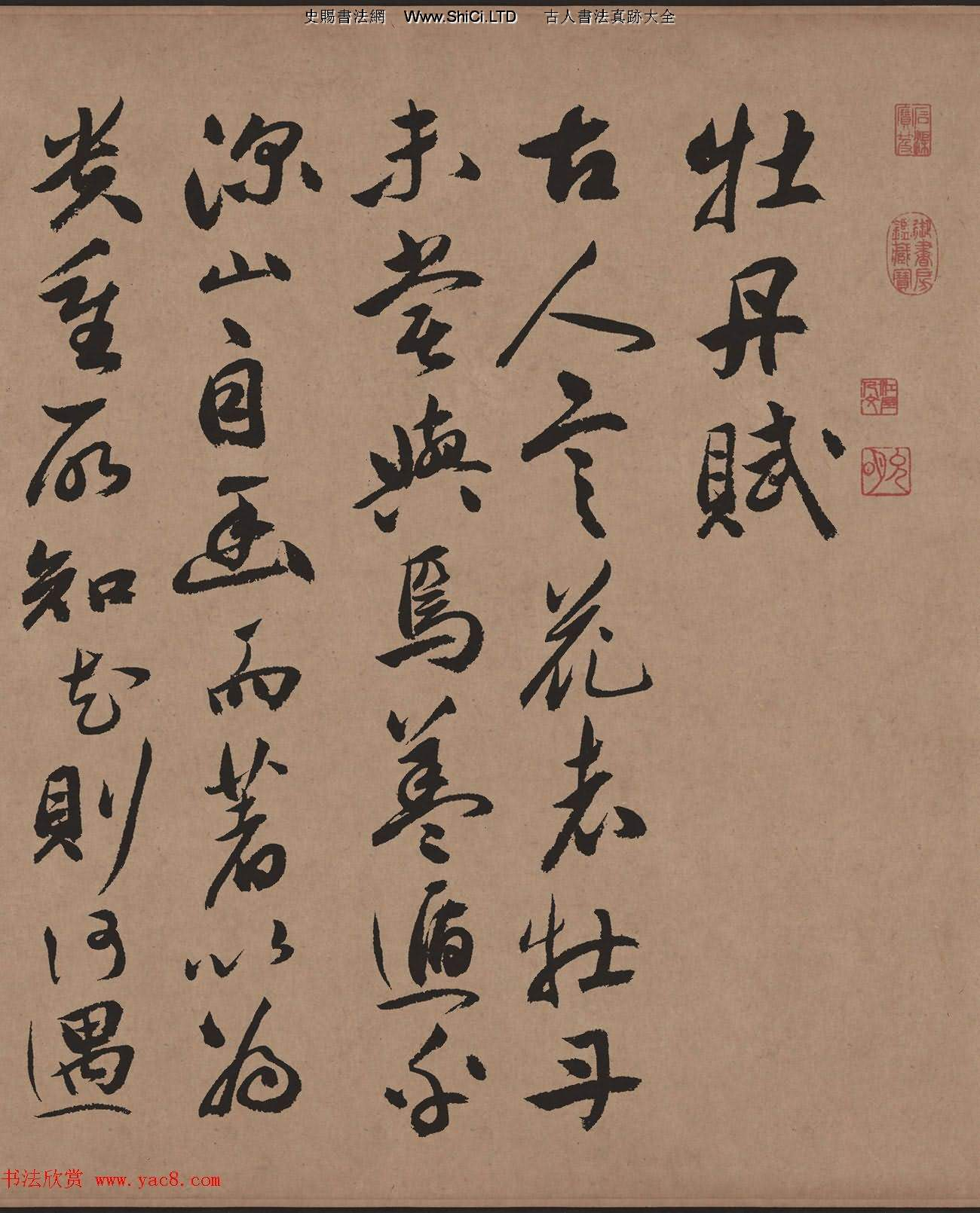 祝允明65歲行草書法字帖《牡丹賦》彩色高清(共20張圖片)