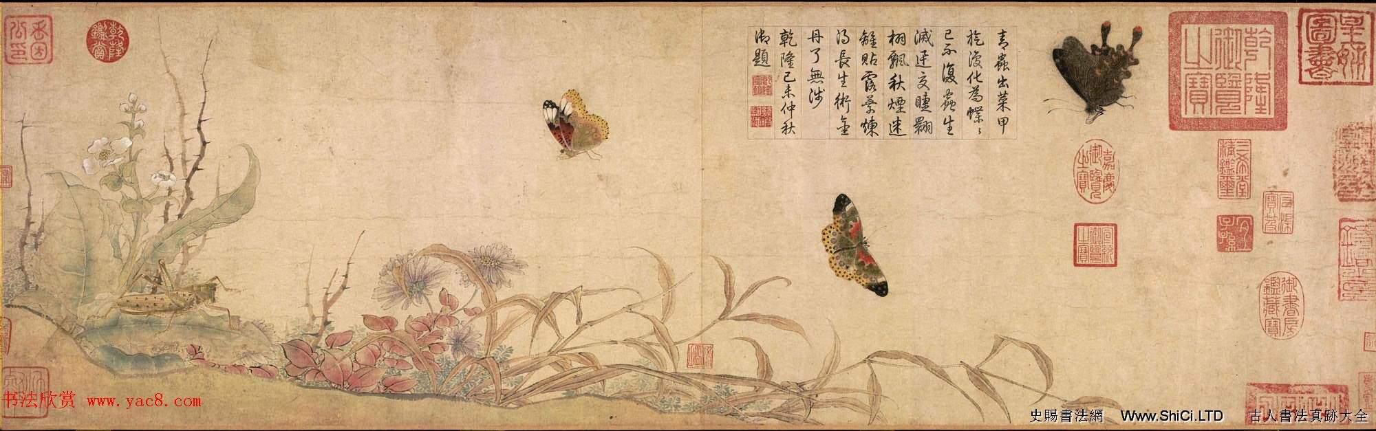 北宋宮廷畫家趙昌繪畫賞析《寫生蛺蝶圖卷》(共4張圖片)
