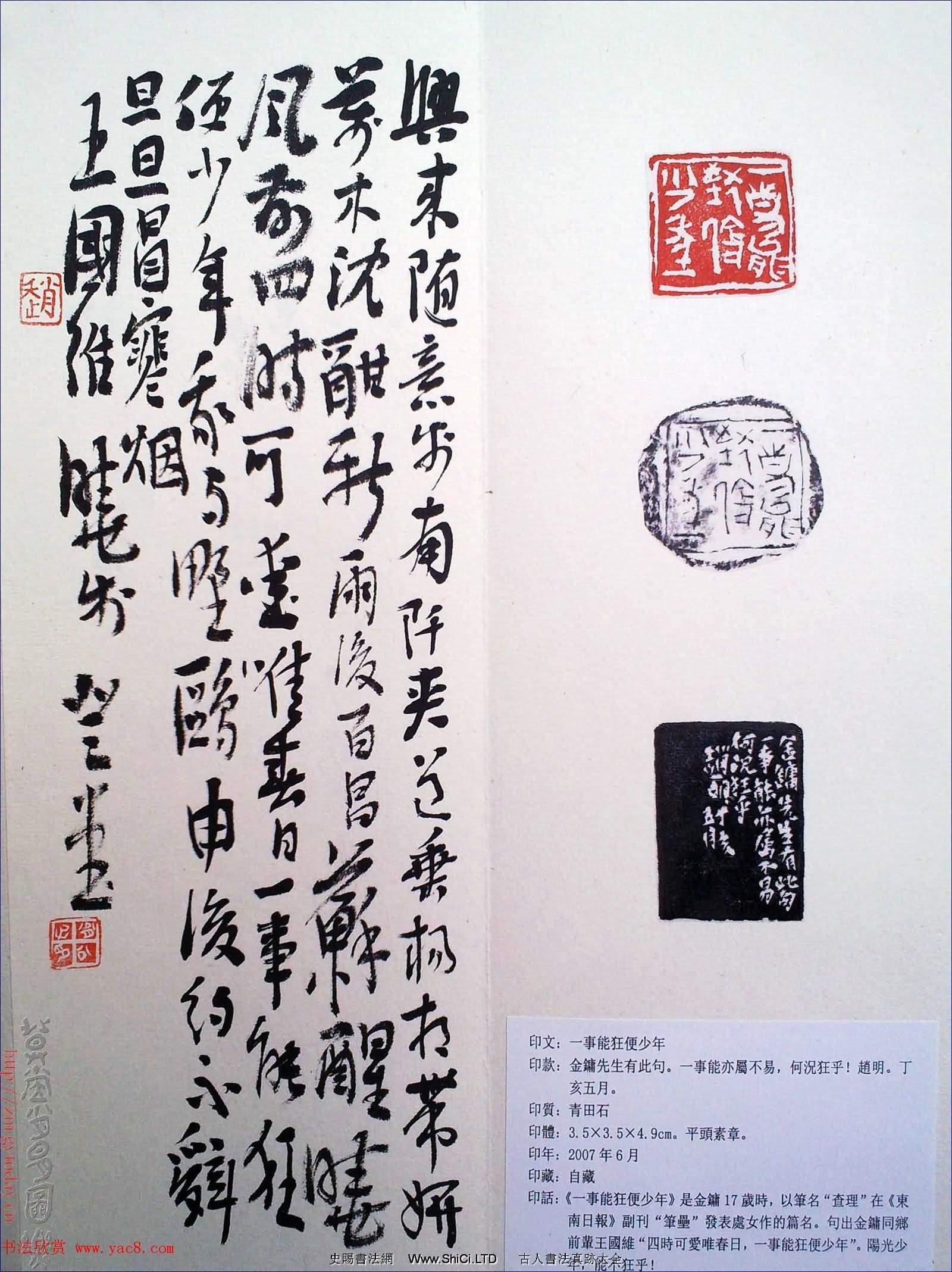 趙明書法篆刻欣賞白文古璽精選寅集