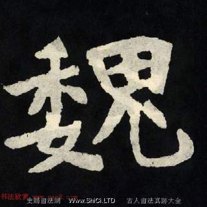 放大魏楷《張黑女墓誌單字帖》(共330張圖片)