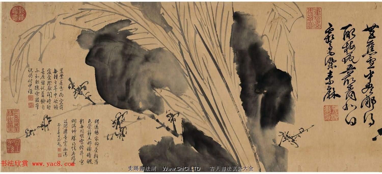 徐渭傳世書畫《水墨寫生》卷