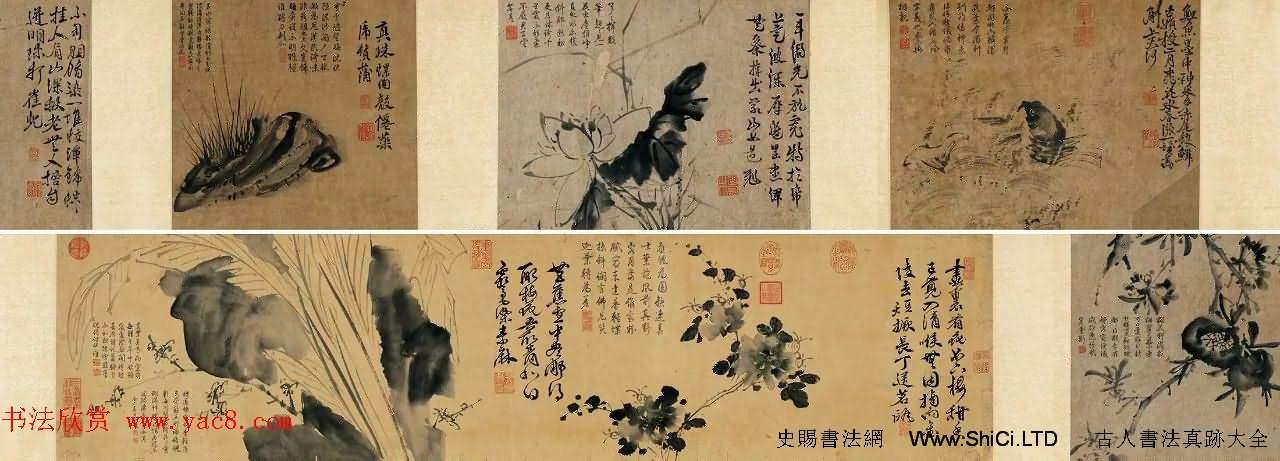徐渭傳世書畫《水墨寫生》卷(共9張圖片)