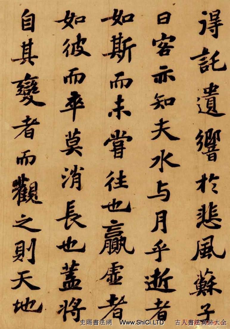 蘇軾行楷書法欣賞《前赤壁賦》