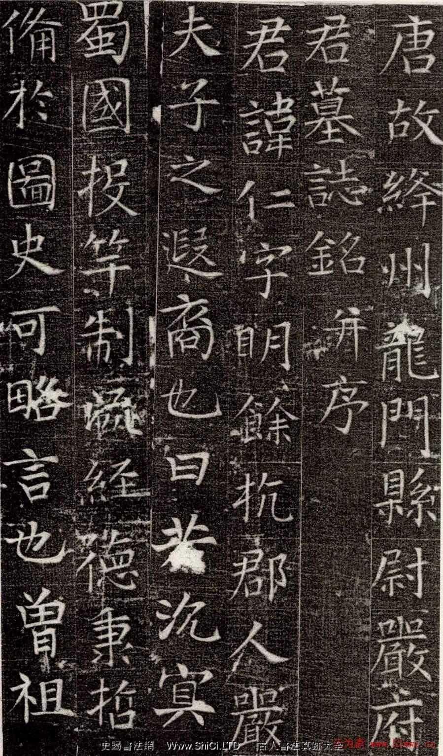 張旭書法楷書真跡欣賞《嚴仁墓誌》(共4張圖片)