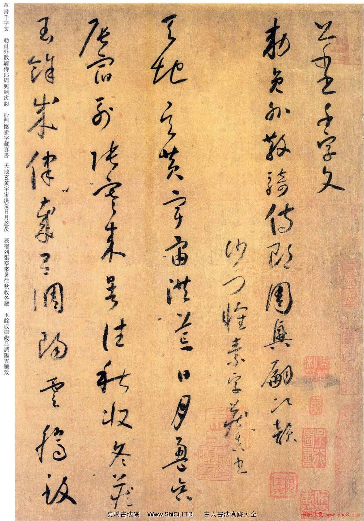 唐代懷素《小草千字文》墨跡(共16張圖片)