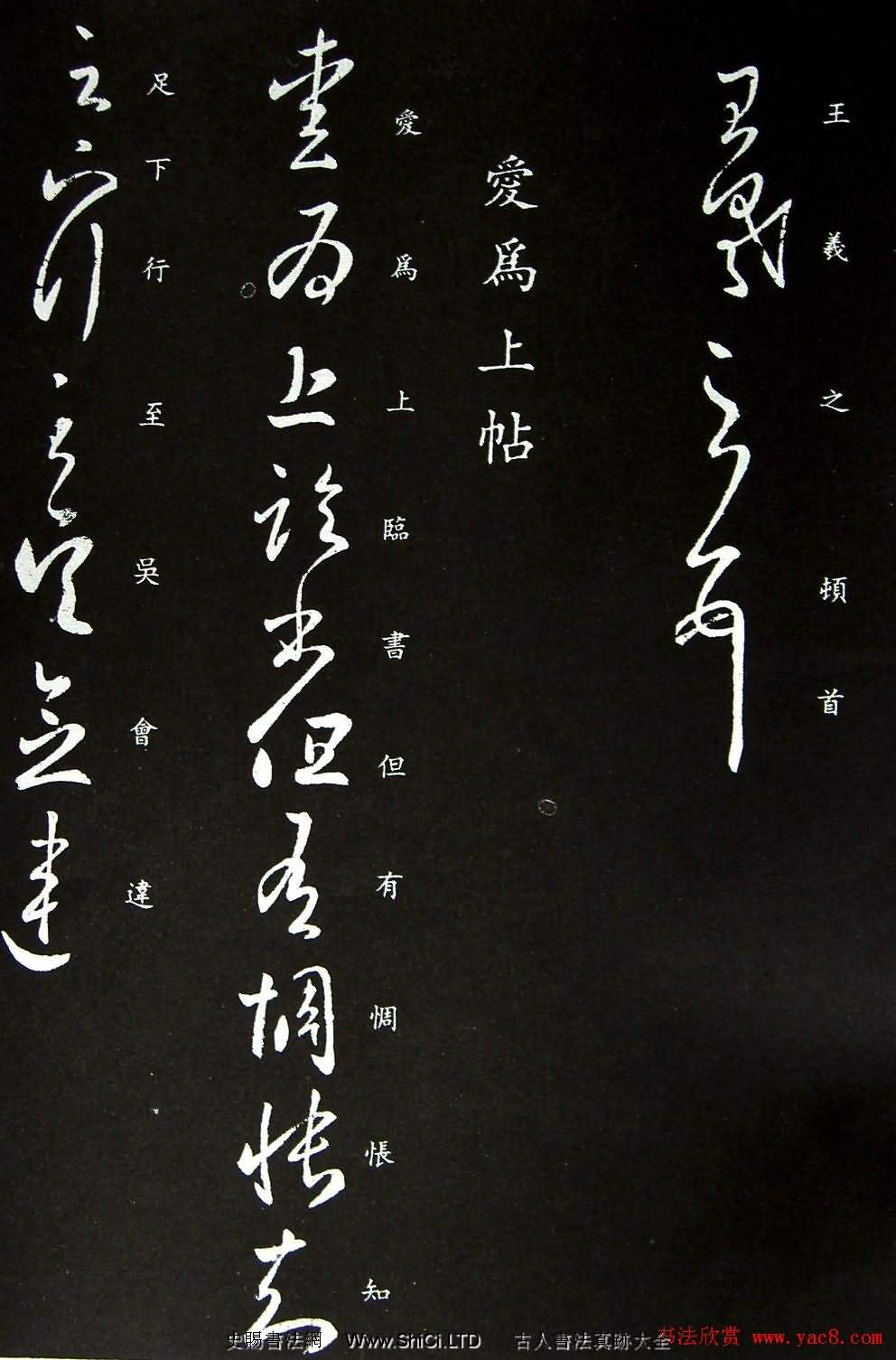 王羲之草書欣賞《蒸濕帖》+《愛為上帖》