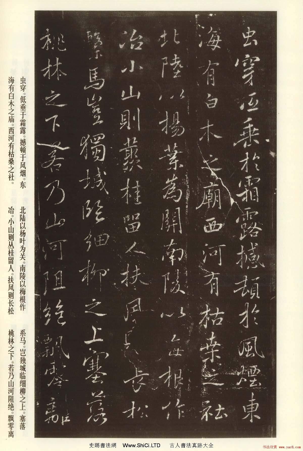 褚遂良書法欣賞《枯樹賦》(大圖)