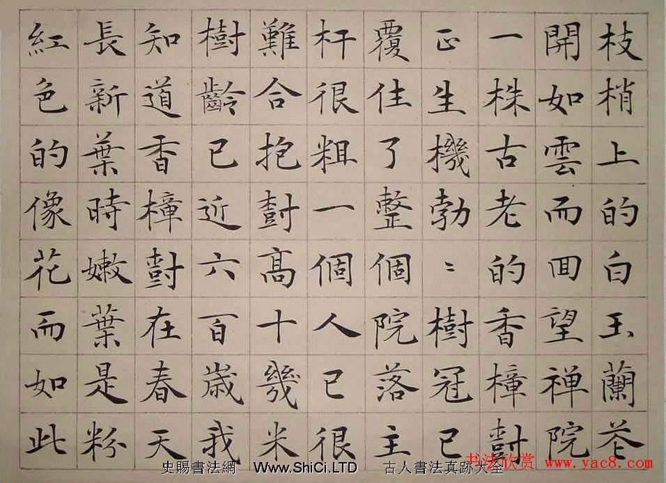 安徽韋斯琴書法作品欣賞