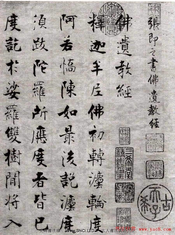 張即之楷書抄經《佛遺教經》(共37張圖片)